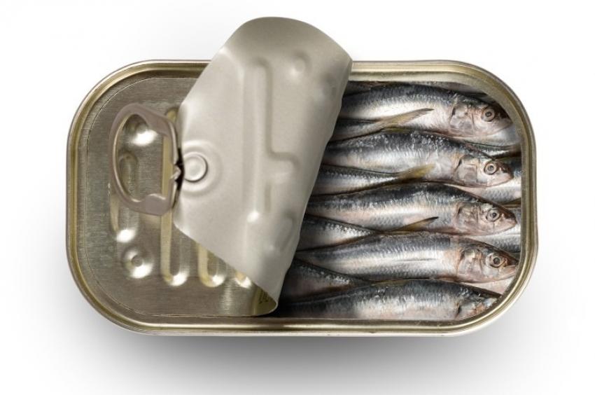 Konserwy rybne